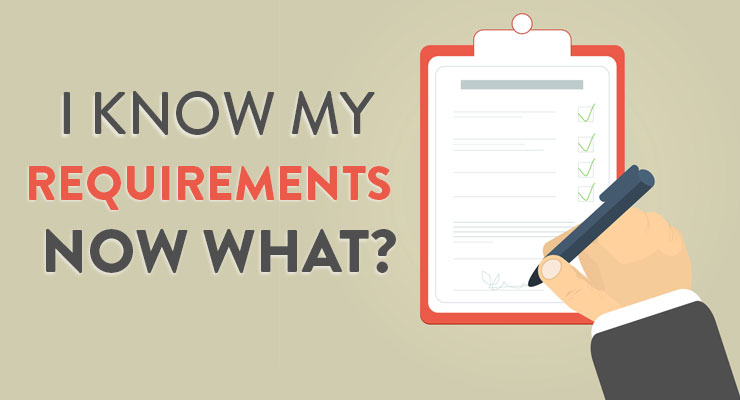 I Know My Requirements. Now What?